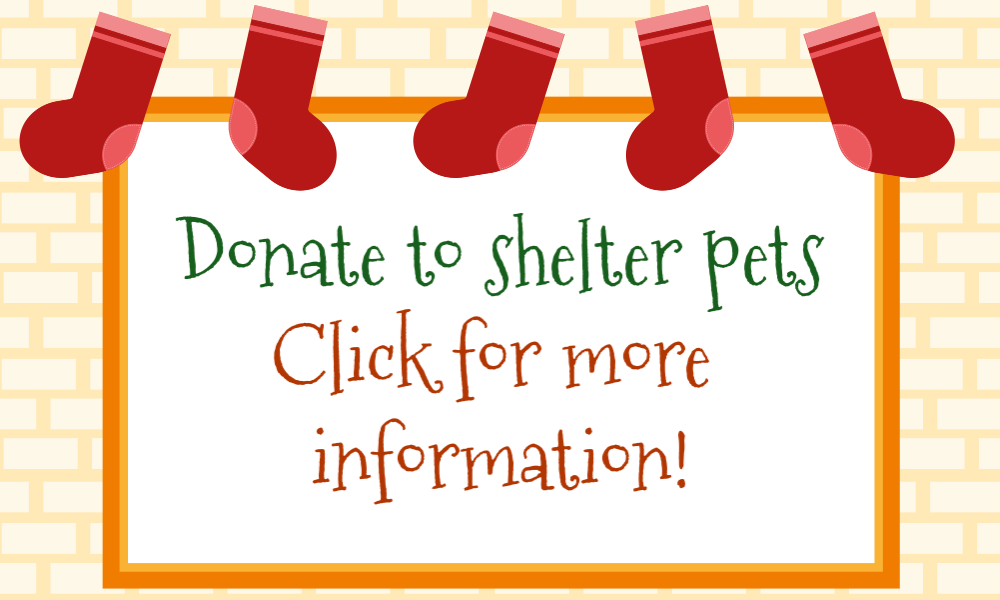 Donate to shelter pets click for more information
